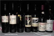 Wine Tasting - Various selections - Lorenz Summer Party 2010