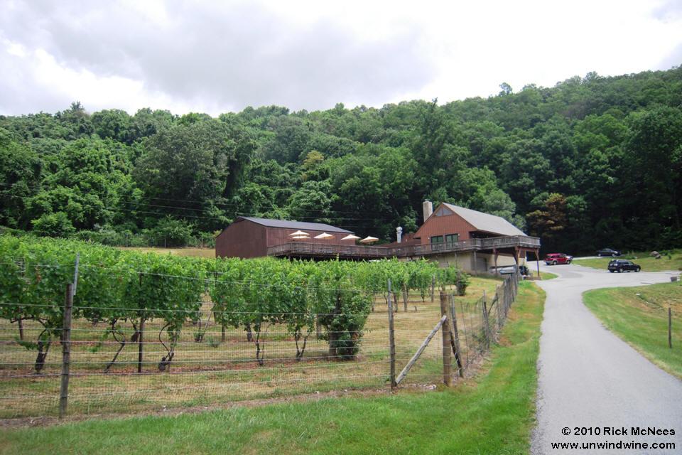 Naked Mountain Winery 59
